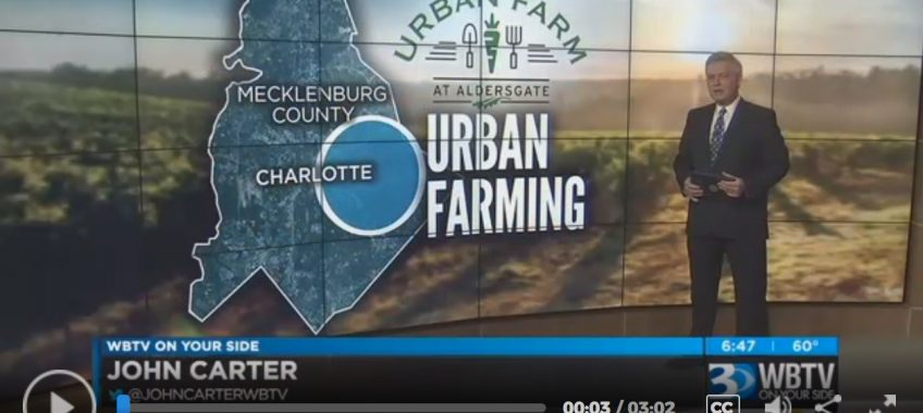Urban Farm Aims To Provide Economical Boost For East